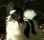 tricianbri-black-velvet-at-erinsjoy.jpg